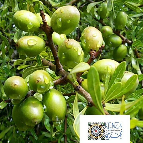 Organic  Argan Oil  Wholesale 32oz