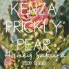 Prickly Pear Honey Sakura Body Scrub