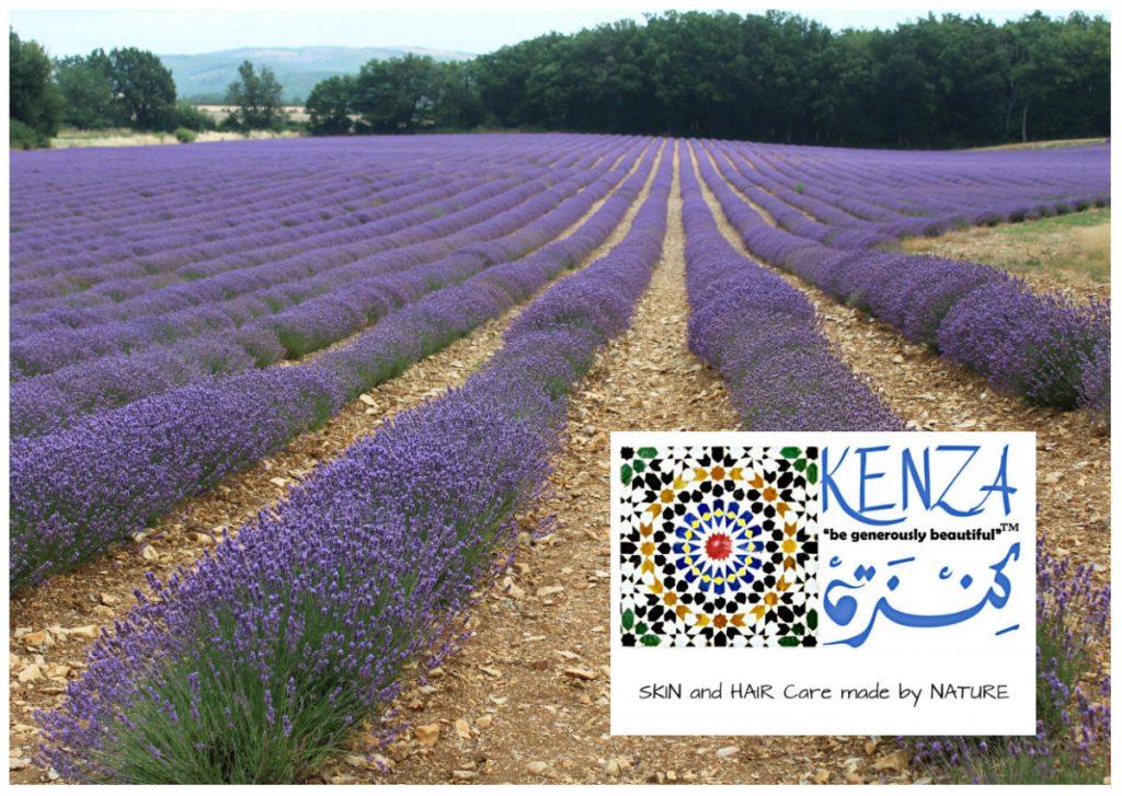 Lavender KENZA International Beauty