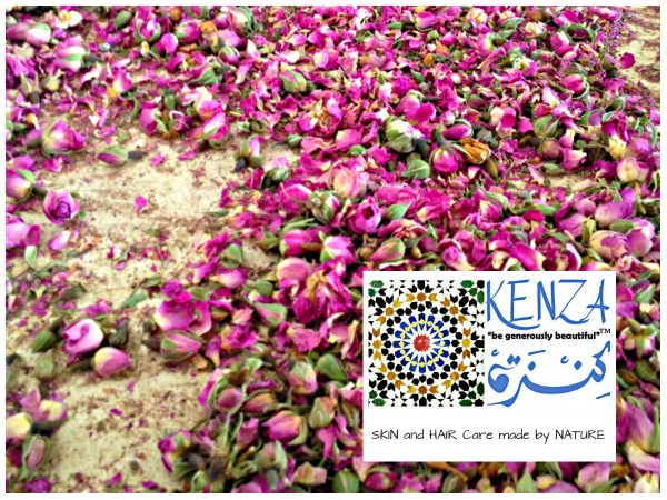 Dry Roses Flowers Morocco
