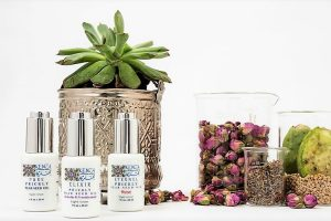KENZA Prickly Pear Seed Oil Collection