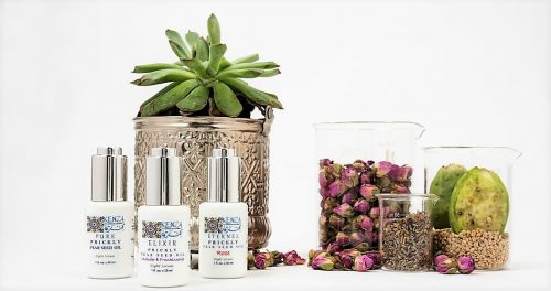 KENZA Prickly Pear Seed Oil Beauty Collection