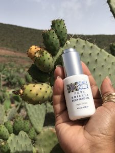 KENZA Prickly Pear Seed Oil Cactus field